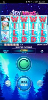 Icy Wilds - Nice Big Win! (Submitted by Raven952)
